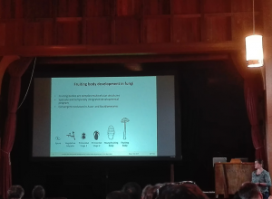 Ms. Krizsan speaking at the 29th Fungal Genetics Conference in Pacific Grove, California